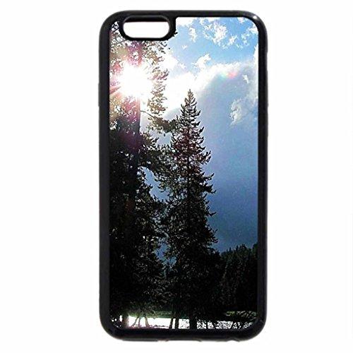 iPhone 6S / iPhone 6 Case (Black) Sunshine thru the pines at Yellowstone