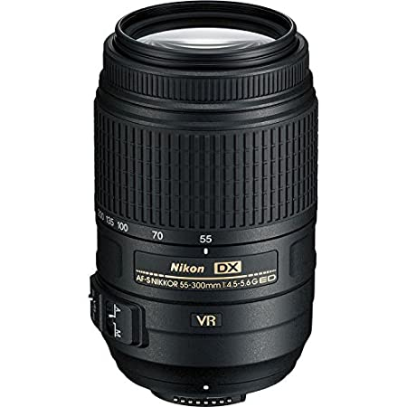 The 8 best nikon 100 300 lens