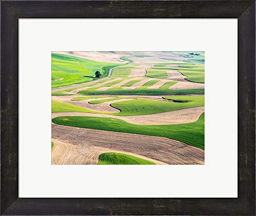 (Eastern Washington Landscape by Julie Eggers/Danita Delimont Framed Art Print Wall Picture, Espresso Brown Frame, 17 x 15 inches)