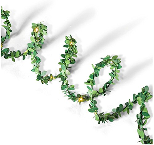 Everlasting Glow 44239 10' Green Boxwood LED Garland Christmas, 4.3InL x 4.33InW x 6InH -