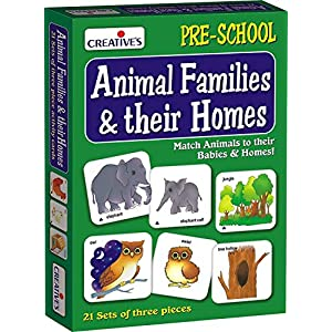 Best Card Games for Preschoolers India