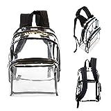 Wholesale 17'' Clear Backpacks with Black Trim - Bulk Case of 24 Transparent Bookbags