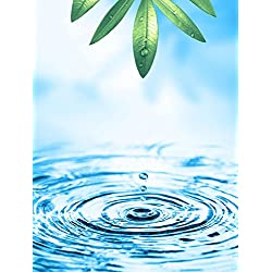 Wallmonkeys Beautiful Wellness Motif Peel and Stick Wall Decals WM343159 (36 in H x 27 in W)