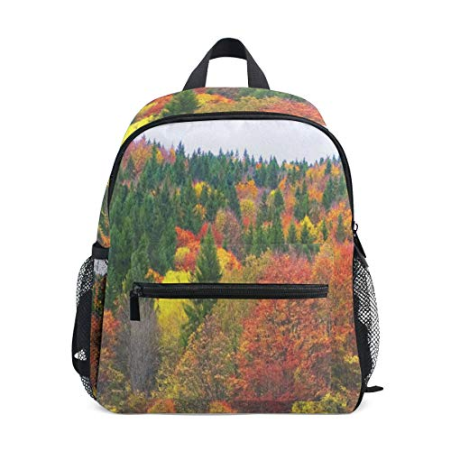 Autumn Colorful Forest School Backpack For Boys Kids Primary School Bags Children Backpacks ()