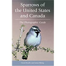 Sparrows of the United States and Canada: The Photographic Guide by David Beadle (2001-12-20)
