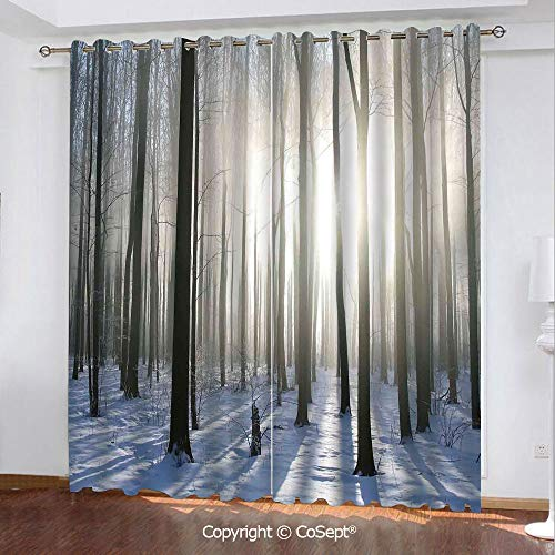 - Solid Polyester Window Curtain,Wintertime Forest on a December Morning Snowy Sunshine Shadows Trunk,for Bedroom and Living Room,51.96x62.99 Inch Length,2 Drape Panels,