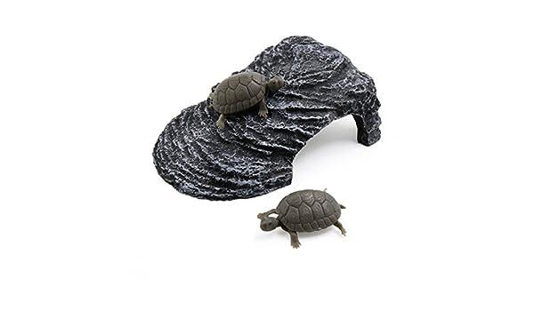 Amazon.com : eDealMax Gris Oscuro paisaje Resina Basking Rampa Tortuga Suba Piedra Hábitat ornamento Para peces de acuario tanque : Pet Supplies