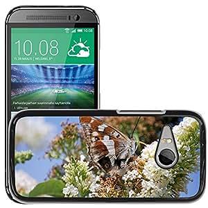 Super Stella Slim PC Hard Case Cover Skin Armor Shell Protection // M00147447 Buddleia Wildflower Flower // HTC One Mini 2 / M8 MINI / (Not Fits M8)
