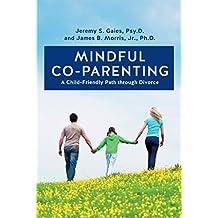 Mindful Co-parenting: A Child-Friendly Path through Divorce