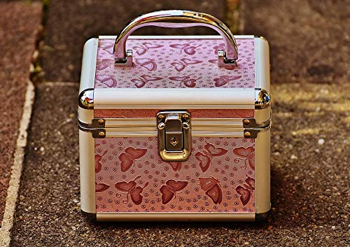 (Home Comforts Canvas Print Vanity Cases Briefcase Cute Silver Pink Luggage Vivid Imagery Stretched Canvas 32 x 24)
