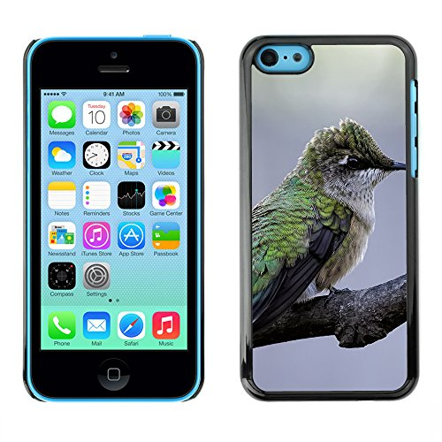 Premio Sottile Slim Cassa Custodia Case Cover Shell // F00008086 oiseau // Apple iPhone 5C