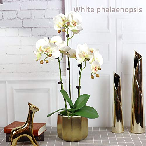 Sister Store 2 Artificial Silk Flower Artificial Mini Potted Flowers Plant Phalaenopsis Butterfly Orchid with Vase Home Kitchen Decoration Party Wedding Garden Office Patio Decoration (Color : White)