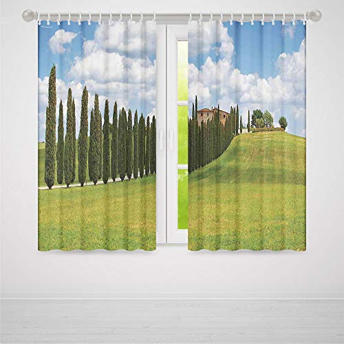 YOLIYANA Decor Collection,Tuscan,for Living Room,Landscape Abandoned Farm House Vineyard on Hill Tall Trees Village Path2 Panel Set,79W X 62L Inches