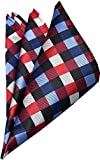 YUNEE Men's Pocket Square Handkerchief Wedding Gift (Color 4)