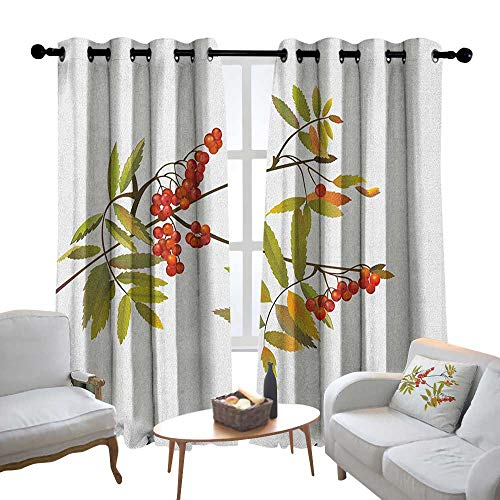 Lewis Coleridge Decorative Curtains for Living Room Rowan,Fresh Organic Ashberry Tree Botanical Natural Gardening Plants Illustration, Green Red Brown,Blackout Draperies for Bedroom 84