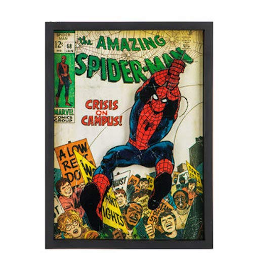 The Amazing Spider-Man Comic Framed Wall Art Home Decoration Theater Media Room Man ()
