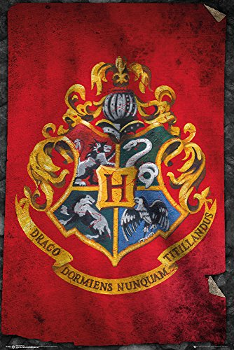 Harry Potter- Hogwarts Flag Mini Poster 16 x 20in