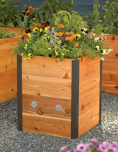 Elevated Cedar Raised Bed 2 x 2 by Gardener's Supply Company