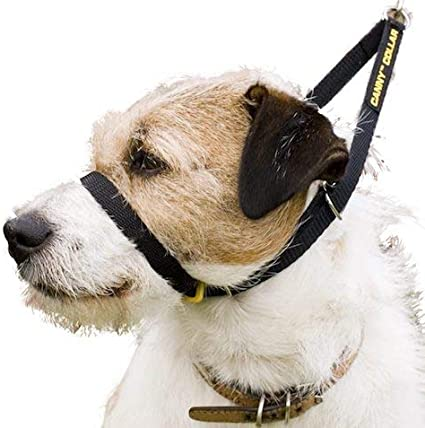 Helps with Dog Training and Helps to Stop Dogs Pulling on The Leash Canny The Collar for Dog Training and Walking