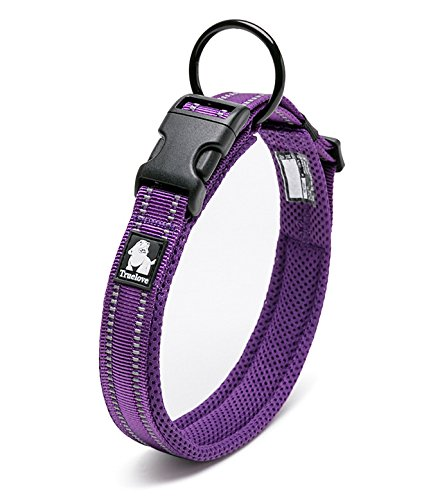 LUNA Adjustable Nylon Pet Collar Padded 3M Reflective Dog Collar with Ring (S, Purple)
