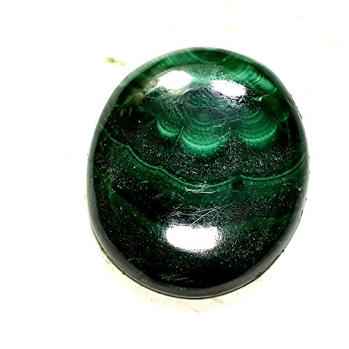 75.00Cts. RARE! NATURAL GREEN DESIGNER MALACHITE OVAL CAB LOOSE GEMS AFRICA by Shree Krishna Gems