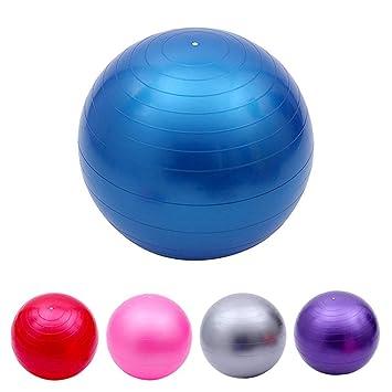 aaerp - Pelota de Gimnasia (65 cm, con Bomba, balón de Equilibrio ...