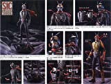 Masked Rider S.I.C KIKAIDER 00 Vol.7