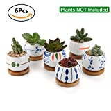 """T4U Succulent Planters With Tray 2.75"""" – Set of 6, Small Cute Ceramic Cactus Pots With Bamboo Tray Decor Review"""