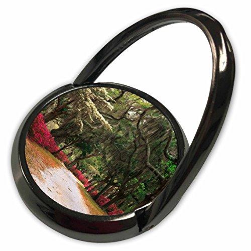 3dRose Danita Delimont - Georgia - Azaleas, live oaks, moss, Savannah, Georgia, USA - US11 AJE0031 - Adam Jones - Phone Ring (phr_143770_1)