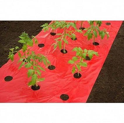 Nature Gartenhocker 65,5x25x34 cm Gr/ün 6020308