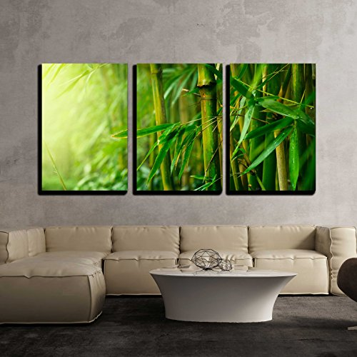 wall26 - 3 Piece Canvas Wall Art - Bamboo - Modern Home Decor Stretched and Framed & Bamboo Wall Art | Bamboo Wall Art. Forest + Tubes.