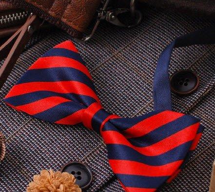 Tok Tok Designs® Handmade Men's Bow Tie - B26 (Silky Navy & Red)