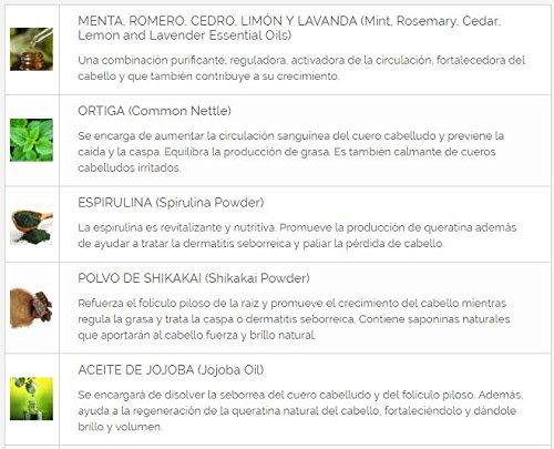 Alma Secret Champú SHIKAKAI con Ortiga, Espirulina, Menta, Romero, Cedro, Limón & Lavanda - 500 ml: Amazon.es: Belleza