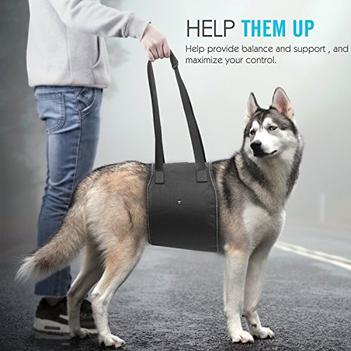 Pawaboo Dog Support & Rehabilitation Harness, Dog Lift Canines Aid Assist Sling for Disabled, Injured, Elderly Pets Dogs, Help with Mobility to Stand Up, Climb Stairs and More, Large Size, Black