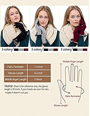 WENDYWU Screen Touch Gloves Winter Thick Warm Lined Smart Texting Gloves for Women