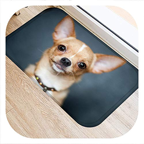 - colorful-space Hongbo New Creative Rugs Washable Funny Dog Doormat Bath Mats Foot Pad Home Decor Bathroom Mats Door Mat Floor Mat,7,400mm x 600mm