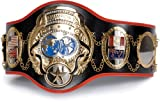 Fighting Sports Universe Championship Belt
