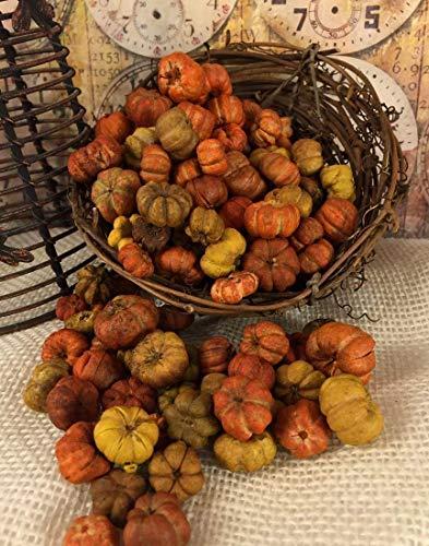 5 FULL Cups of Orange, Yellow, Natural Tones Tiny Putka Pods Mini Pumpkin Shaped Botanical Potpourri Bowl Vase Filler Crafting Element ()