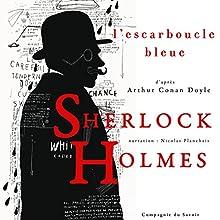 L'escarboucle bleue (Les enquêtes de Sherlock Holmes et du Dr Watson) | Livre audio Auteur(s) : Arthur Conan Doyle Narrateur(s) : Nicolas Planchais