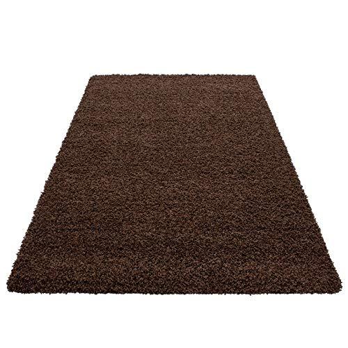 Hochflor Shaggy Teppich für Wohnzimmer Langflor Pflegeleicht Schadsstof geprüft 3 cm Florhöhe Oeko Tex Standarts Teppich, Maße 160x230 cm, Farbe Creme B0178PWZLG Teppiche