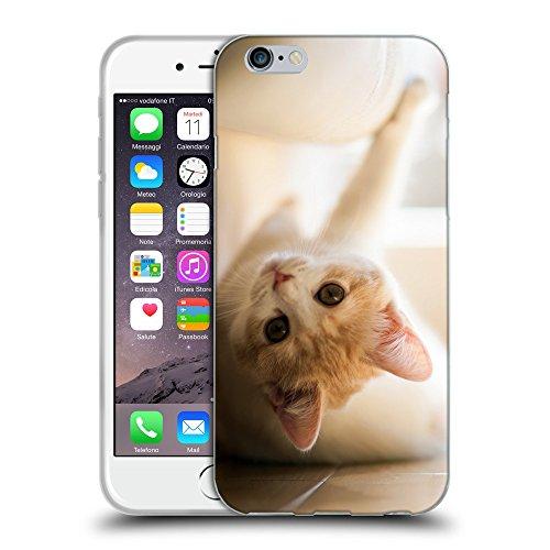 """Just Phone Cases Coque de Protection TPU Silicone Case pour // V00004175 chaton rouge amuser sur un plancher // Apple iPhone 6 4.7"""""""