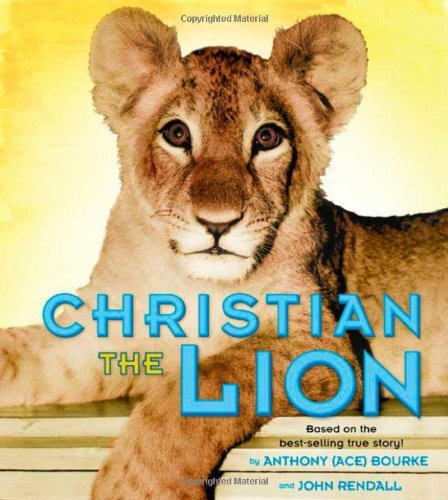 Christian the Lion by Anthony Bourke - Mall Bourke