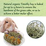 Bunny Chew Toys for Teeth,Natural Organic Timothy