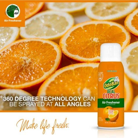 OdoBan Real Citrus Air Freshener, Orange (10oz., 4pk.) OdoBan Real Citrus Air Freshener, Orange (10oz, 4pk.)
