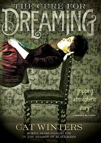 Image of The Cure for Dreaming