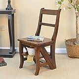 Carolina Cottage Folding Library Ladder Chair