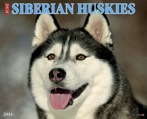 (Just Siberian Huskies 2014 Wall Calendar)