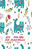 2019-2020 Hello Kitty Pocket Planner: 24-Month Monthly Planner Calendar to Set Goals and Crush Them, Improve Productivity, Time Management and Self Improvement