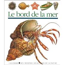 BORD DE LA MER (LE)