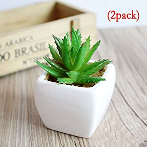 Fly Array Simulation Bonsai Mini view Simulation Flowers Artificial Plants Flowers Ornaments Fashion Simulation Potted Plants Topiaries Home Decoration Eye Protection Spiny little aloe vera (2 pack) 51